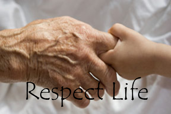respect for life The purpose of respect life is to foster a culture/worldview—one that promotes life—in support of those who cannot help themselves, those who have no voice: the pre-born, infants, those with special needs/disabilities, and the elderly/infirmed.